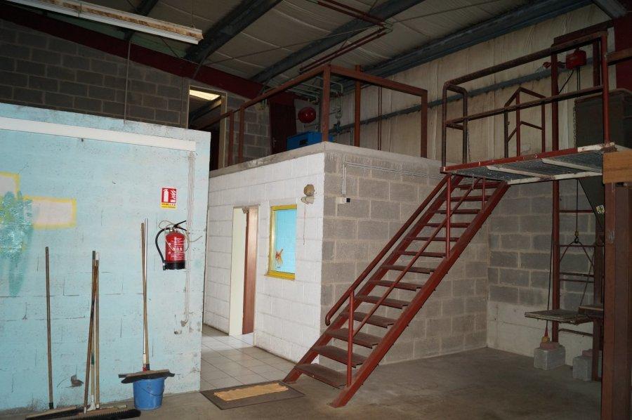 louer entrepôt 0 chambre 450 m² pétange photo 5