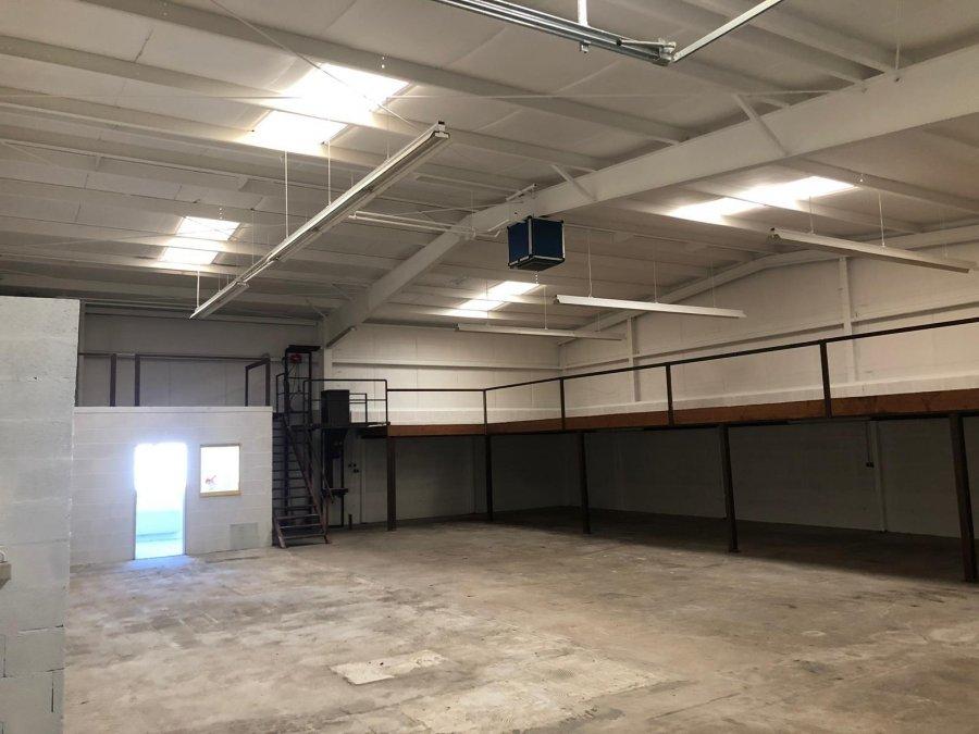 louer entrepôt 0 chambre 450 m² pétange photo 4