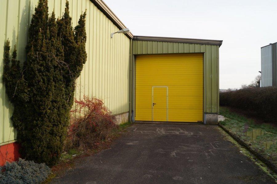 louer entrepôt 0 chambre 450 m² pétange photo 7