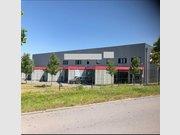 Entrepôt à louer à Munsbach - Réf. 6650435