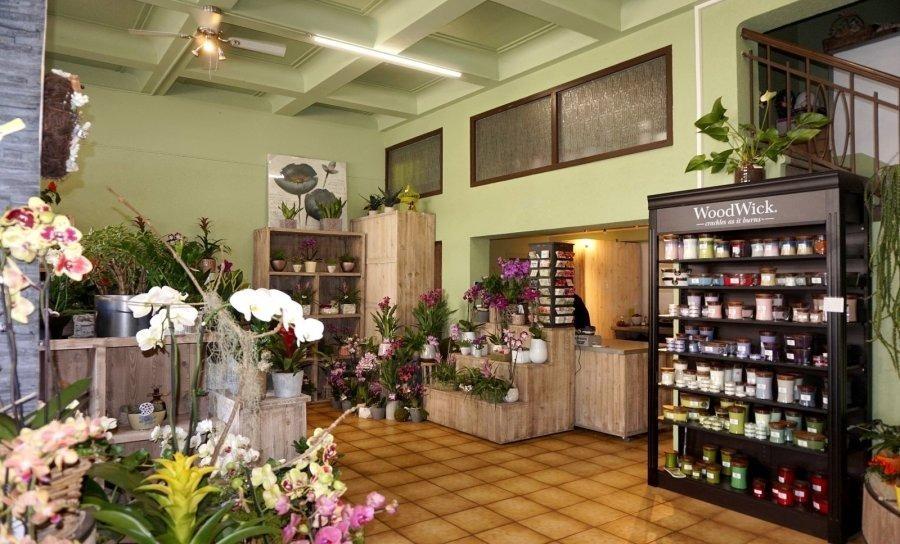 louer local commercial 0 chambre 100 m² esch-sur-alzette photo 1