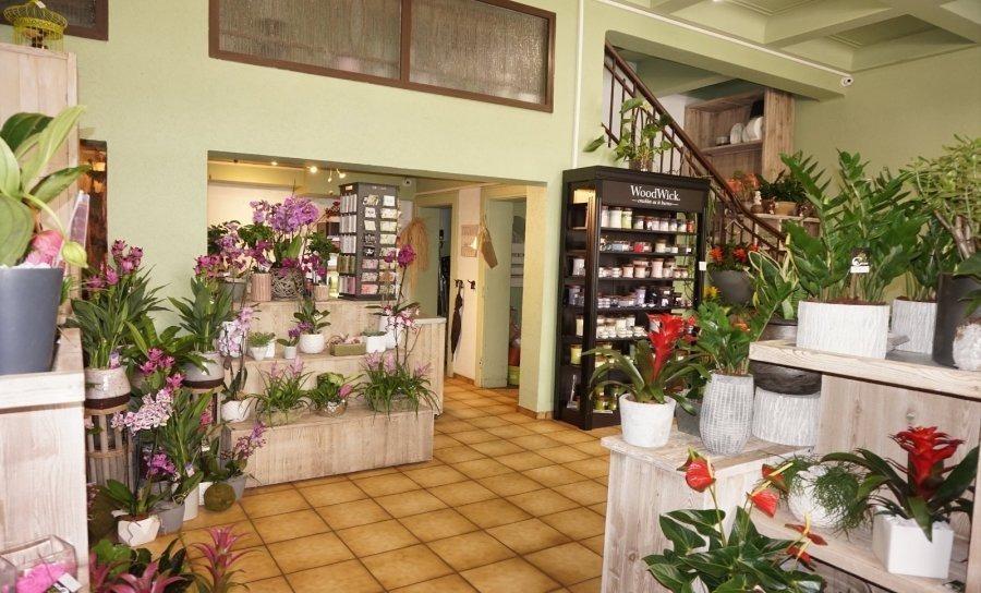 louer local commercial 0 chambre 100 m² esch-sur-alzette photo 4