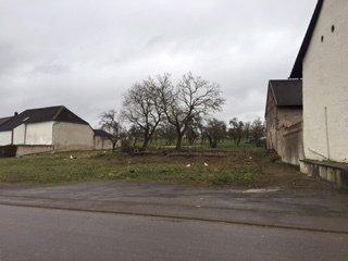 Terrain constructible à vendre à Beuren