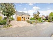 Maison à vendre 3 Chambres à Hannut - Réf. 6558803