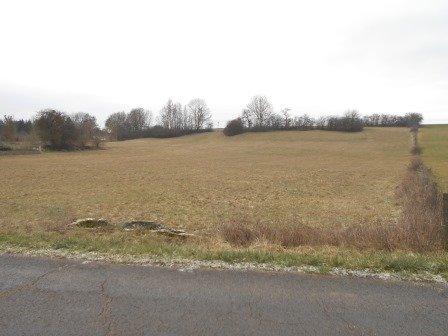 acheter terrain constructible 0 pièce 0 m² murville photo 2