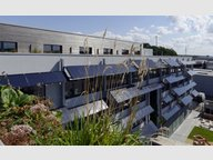 Bureau à louer à Windhof - Réf. 6624611