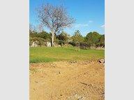 Terrain constructible à vendre à Lessy - Réf. 6314083