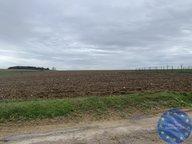 Terrain constructible à vendre à Nicey-sur-Aire - Réf. 7145827