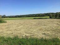 Bauland zum Kauf in Courcelles-Chaussy - Ref. 6797923