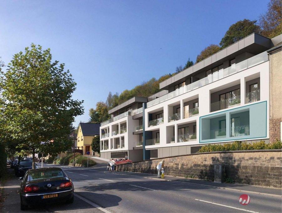 acheter appartement 2 chambres 98.8 m² diekirch photo 1