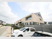 House for rent 6 bedrooms in Roodt-Sur-Syre - Ref. 6719859