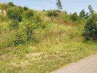Terrain constructible à vendre à Remiremont - Réf. 2776435