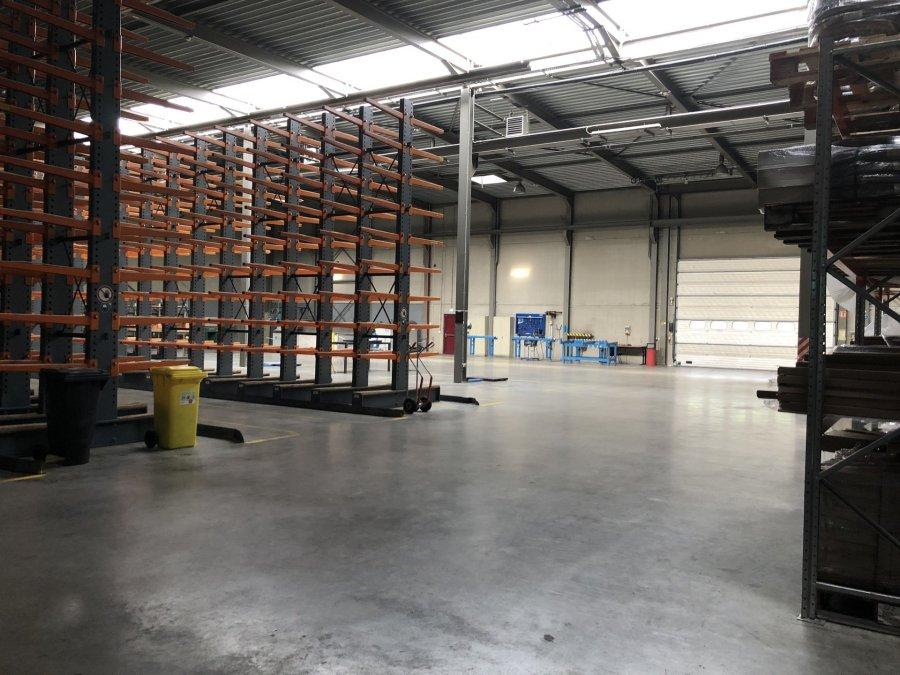 acheter entrepôt 0 chambre 2000 m² ehlerange photo 6