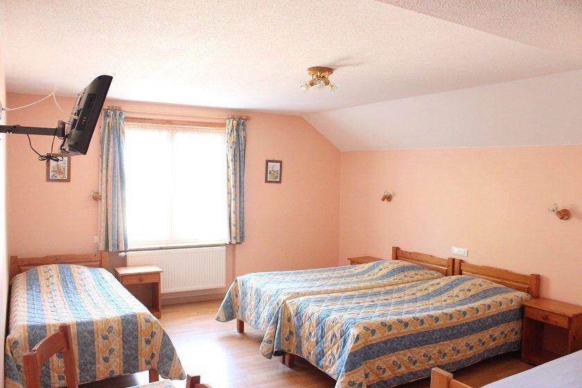 acheter local commercial 0 pièce 900 m² gérardmer photo 5