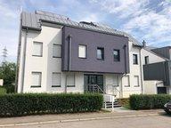 Appartement à louer 1 Chambre à Belvaux - Réf. 6395027