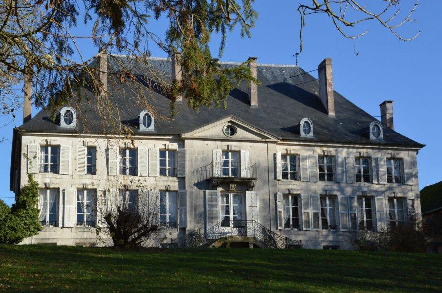acheter château 20 pièces 686 m² nancy photo 1