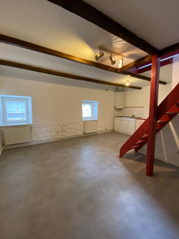 louer appartement 2 pièces 44.69 m² serémange-erzange photo 1