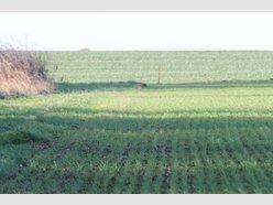 Terrain constructible à vendre à Beuvillers - Réf. 4169891