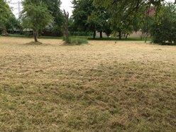 Terrain à vendre à Limersheim - Réf. 4998563