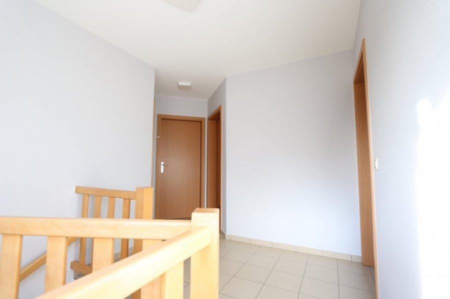 acheter bureau 8 chambres 323 m² weiswampach photo 3