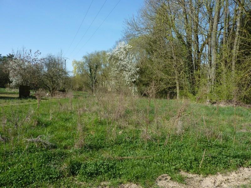 acheter terrain constructible 0 pièce 0 m² heining-lès-bouzonville photo 2