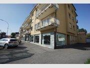Local commercial à louer 3 Chambres à Bereldange - Réf. 5999795