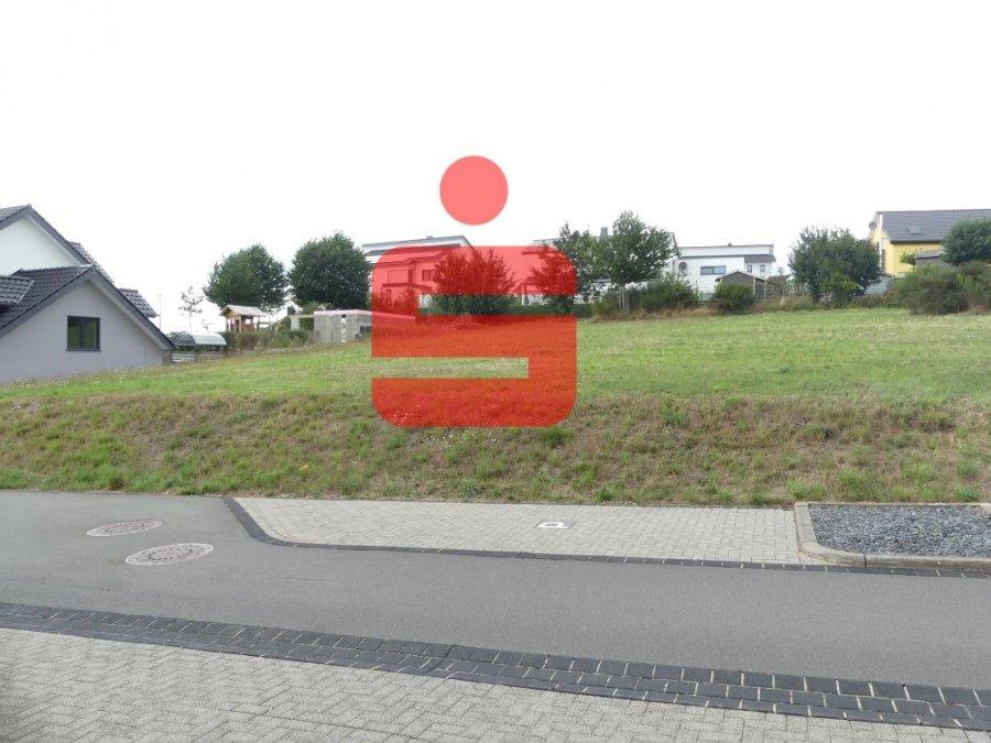 bauland kaufen 0 zimmer 0 m² neuerburg foto 1