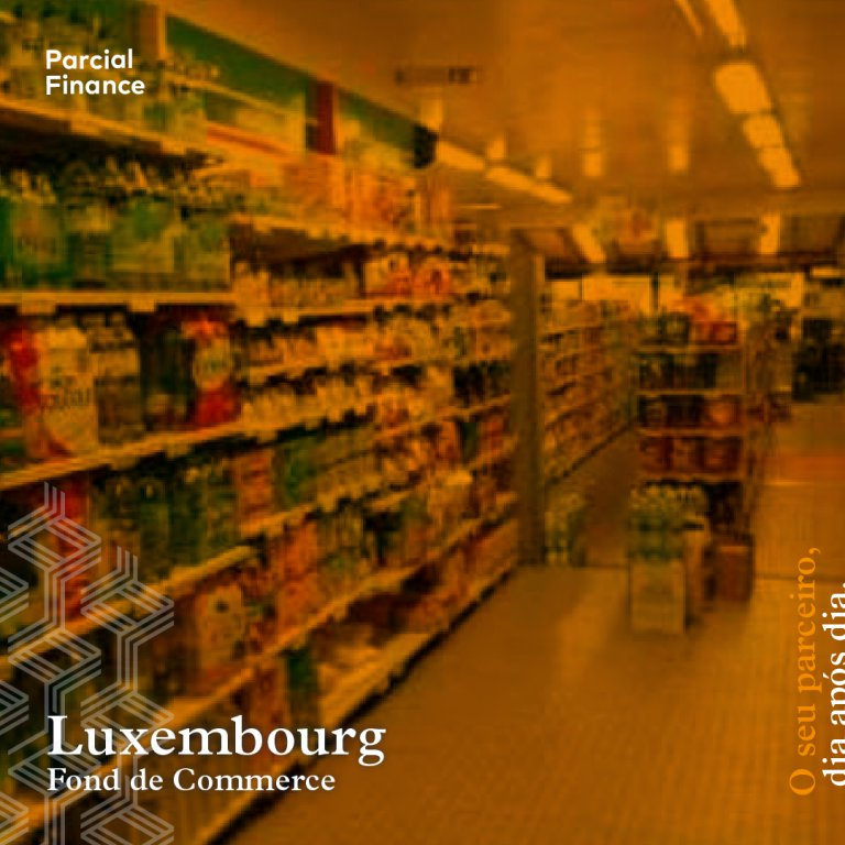 acheter fond de commerce 0 chambre 120 m² luxembourg photo 1