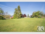 Terrain constructible à vendre à Grosbous - Réf. 6567875
