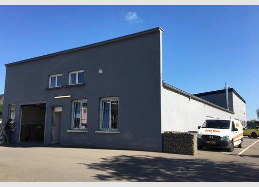 Entrepôt à louer à Bertrange - Réf. 6553539