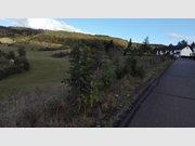 Grundstück zum Kauf in Holsthum - Ref. 4827091