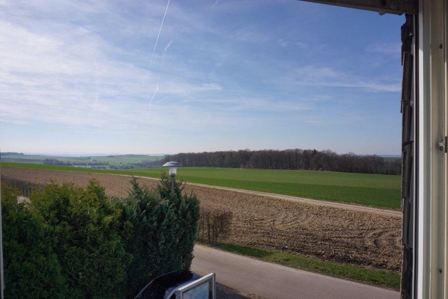 landhaus kaufen 5 zimmer 190 m² saarburg foto 6