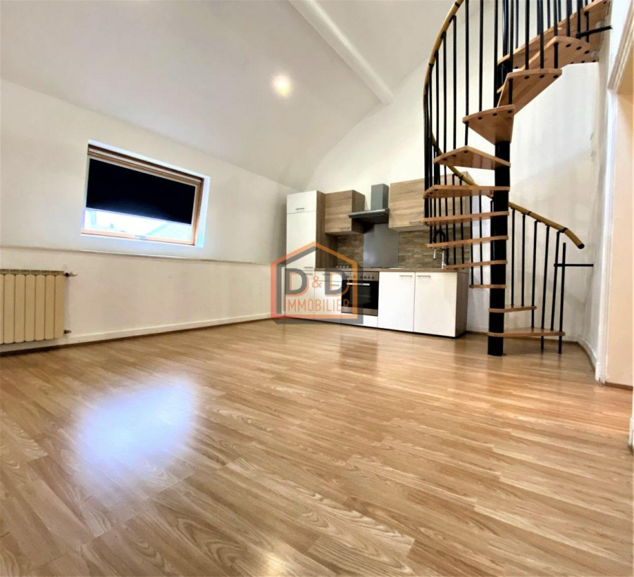 acheter maison 6 chambres 260 m² esch-sur-alzette photo 3