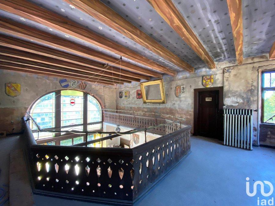 acheter château 20 pièces 910 m² ham-sous-varsberg photo 4