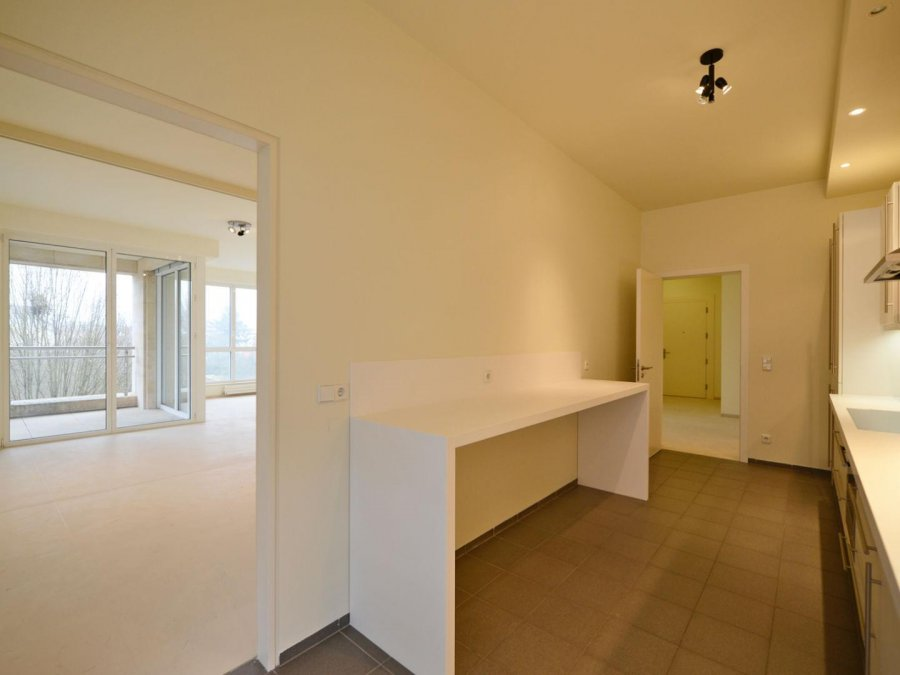 louer appartement 3 chambres 168 m² luxembourg photo 6