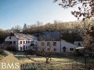 Landhaus zum Kauf 15 Zimmer in Heidweiler - Ref. 6799075