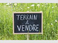 Terrain constructible à vendre à Seingbouse - Réf. 6394867