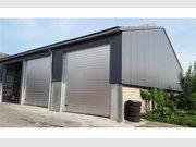 Entrepôt à louer à Steinsel - Réf. 5940723