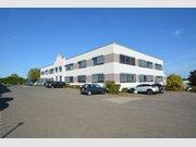 Bureau à louer à Windhof - Réf. 6679795