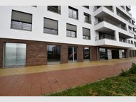 Bureau à louer à Bertrange - Réf. 6618355