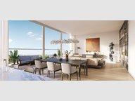 Penthouse-Wohnung zum Kauf 2 Zimmer in Esch-sur-Alzette - Ref. 6804740