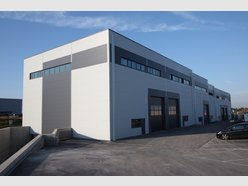 Bureau à louer à Strassen (Industrie,-rue-de-l) (LU) - Réf. 3835652