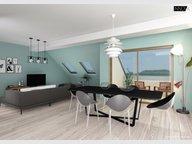 Appartement à vendre 1 Chambre à Schifflange - Réf. 6215940