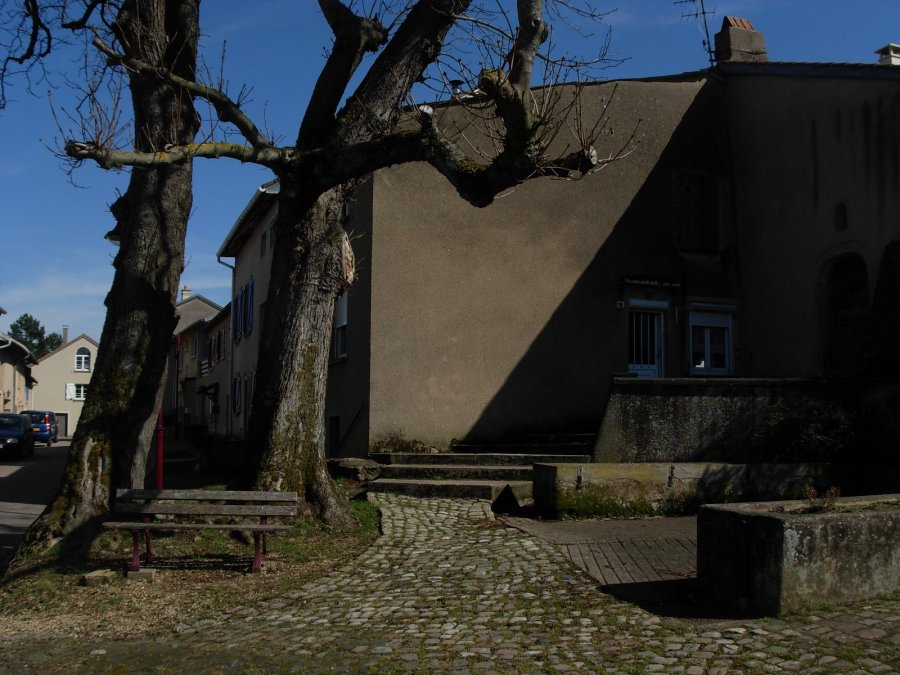 Maison mitoyenne à vendre F3 à 12 RUE DES MARONNIERS 57070 VILLERS L ORME