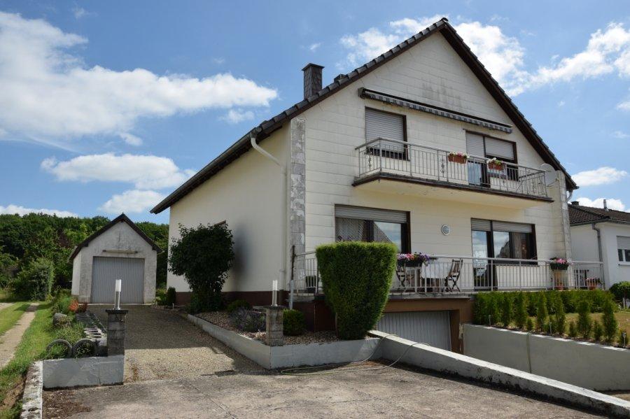 acheter maison individuelle 14 pièces 300 m² palzem photo 1