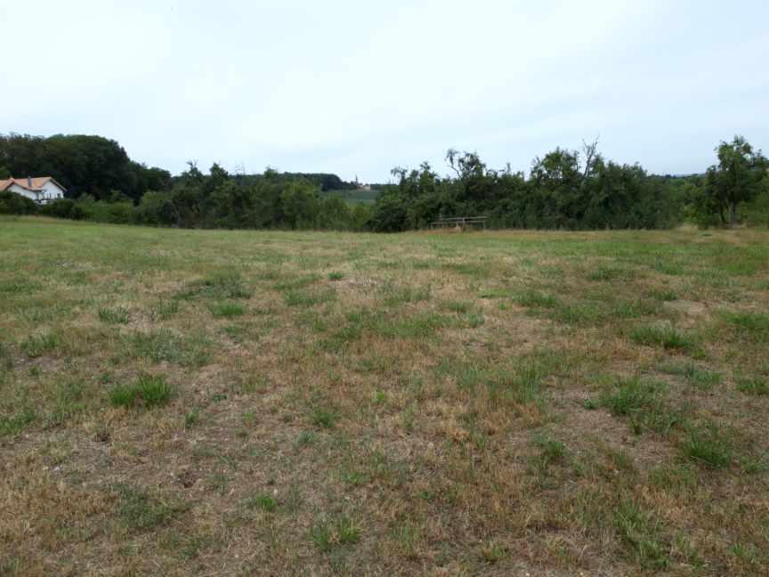 acheter terrain constructible 0 pièce 0 m² heining-lès-bouzonville photo 1