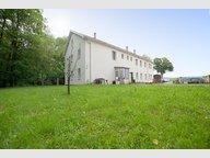Immeuble de rapport à vendre à Molsheim - Réf. 5059108