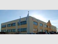 Bureau à louer à Windhof (Koerich) - Réf. 5312052
