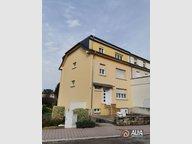 Apartment for rent 1 bedroom in Dudelange - Ref. 6747204