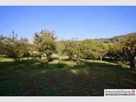 Terrain constructible à vendre à Ban-de-Laveline - Réf. 6506308